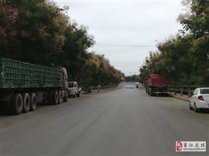 马路成了大型货车的停车场了