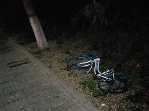 共享单车随意倒着放