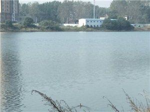 通许咸平湖变好了