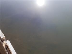 �江河有污水生活排出