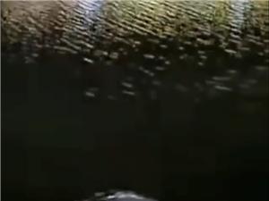 化州东堤路小车开进江