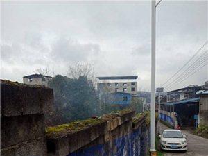 城内乱烧垃圾污染空气
