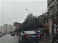 求证?!南溪古街有武汉车辆真假?