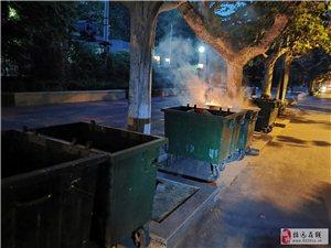 上海的垃圾都已�分�回收了,而招�h垃圾如何�理?!
