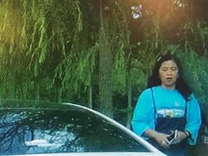 无良女司机