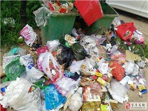 宝丰东城国际小区,垃圾遍地,蚊蝇乱飞,臭气熏天