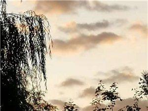 五色云石塞北秋来天渐凉,山尤花艳柳丝长。半天云彩风高远,大好河山锦绣妆。胡杨图