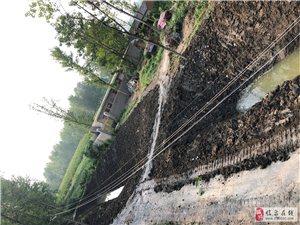 农村沟塘河道清淤希望能够做好点