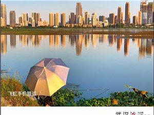 武汉沙湖印象