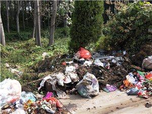 垃圾长时间堆积无人清理