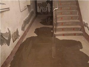 看看富源街了�堑览铮�就是不缺水