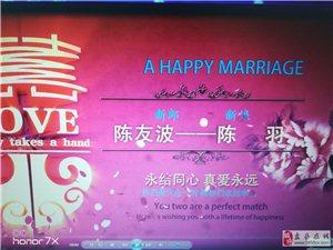 U盘一个,因为替U盘主人着急,所以冒昧打开U盘,发现是结婚的人,新娘名陈羽,新郎名为陈友波,看到信息