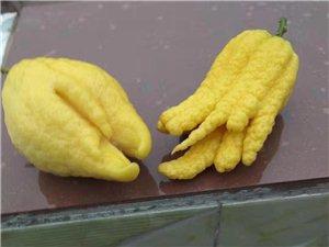 有怎�拥��檬??太好看了。