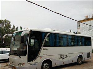 无手续40坐金龙客车出售或置换