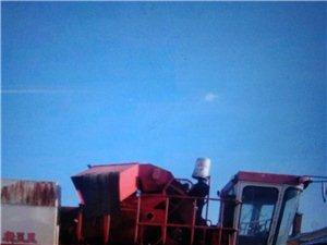 新三王玉米收割机出售13654576338