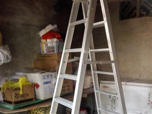 铝梯,人字。2米。   帐篷3米