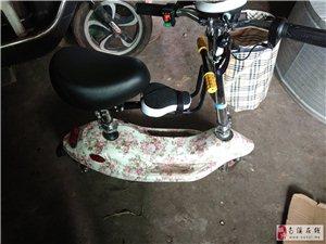 新款小海豚��榆�代步�滑板�代�{�成人��幼孕熊�折�B�