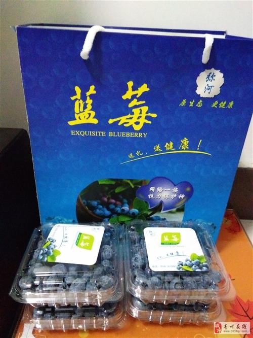 新鲜的蓝莓,蓝莓干,蓝莓酒已上市,是馈赠亲友的高档礼品。需要的请提前预订 ,
