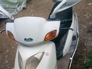 因為在外地工作長期不騎便宜出售縣城,豪爵悅星踏板摩托摩托7成新機器杠杠的電話13838862276