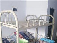 高低床兩個,一個50元,可買一個,自取 地址:豪布斯卡