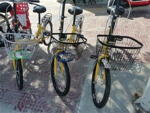 出售全新20自行�,售�r110元,需要的�系。