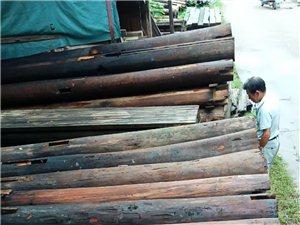 求购杉木柱子13870501488