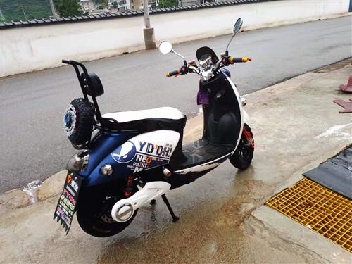 雅迪电瓶车 买了半年 因工作调动没用了低价转让有意者联系15183445111会东县城实物议价200...