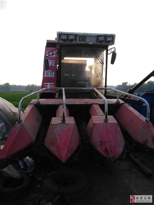 急轉國豐玉米收割機三行低價出售