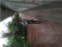 折叠自行车转让。