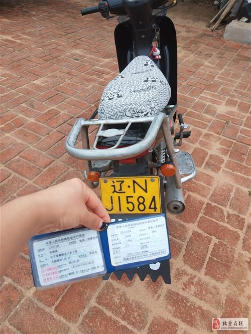 大陽摩托车有牌有证,车况良好,欲购从速。