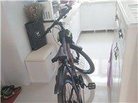 買了不到半年的永久牌山地自行車出手。