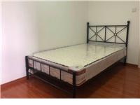 全新鐵藝雙人床,150+200,新買的沒用過,不帶床墊,自取價格300,地址固安孔雀大衛城
