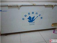 門面到期!568升超大容量冷凍柜800元,保鮮冷藏柜200元出售!