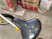 折叠上海凤凰牌自行车