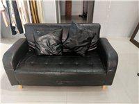 小沙发99成新 长135 宽70 处理200 实木桌子长110 宽60 处理100