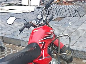 雅马哈摩托车,有发票、行驶证、已年检上牌,因在外地不经常骑,便宜处理掉,成交后需过户,电话18372...