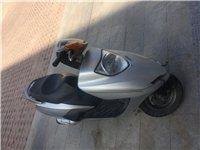 进口本田踏板便宜出售有要的联系15550586039
