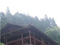 木房架子急转让 基本情况:三间五柱,两层半,三方转角走廊。一楼基本上全装,二楼未装。详见下图… ...