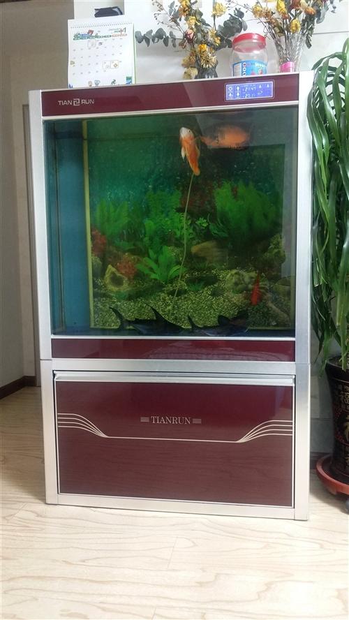 鱼缸:宽1米、厚度0.4米、高1.5米。因家中经常无人。急需要处理,价格1500元,真心需要看完鱼缸...