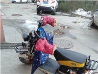 新日哈雷王子,學生上學騎的,用不著了,便宜處理,64v300-10輪胎