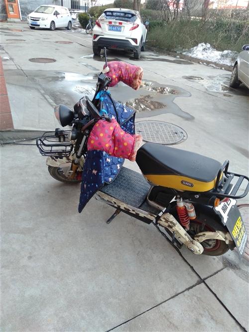 新日哈雷王子,学生上学骑的,用不着了,便宜处理,64v300-10轮胎