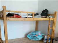 轉自家使用實木上下床,1.2米、1.5米寬各一張,八成新,歡迎咨詢!
