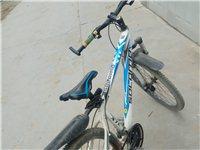 变速自行车,正常使用中