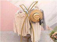 出售2个,9成新X中岛服装展示架,一个长100cm,一个长120cm,高度一样,颜色纳米金,不掉漆的