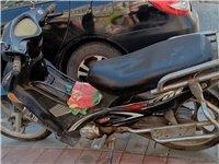 弯梁摩托车,哪都好使,不烧机油,700元   澳门金沙城中心零公里附近看车