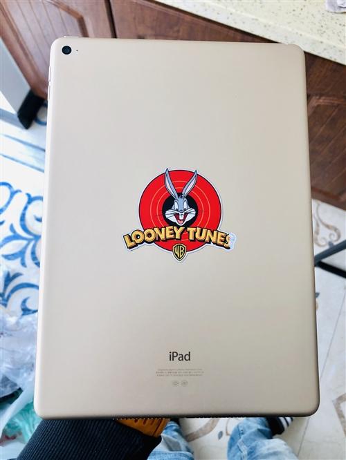 出售国行自用ipad air,堪称最薄ipad,网课利器!视网膜屏!外观成色保守的说99新!一切功能...