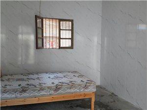 1室1厅1卫300元/月