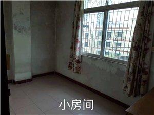 3室1厅1卫550元/月