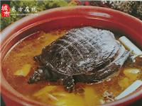 【东方在线精选】168元抢购原价258元的小种母鸡炖山龟(乐海美食园)