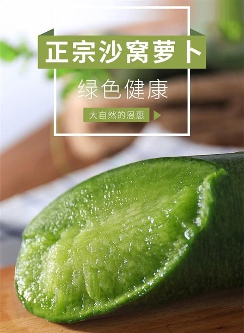 脆甜爽口的正宗沙窩水(shui)果蘿(luo)卜特價28元/箱(xiang)十斤,原價48元/箱(xiang)